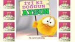 İyi ki doğdun AYSUN