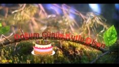 Üç farklı şekilde Natürel Doğum Günü Kutlaması