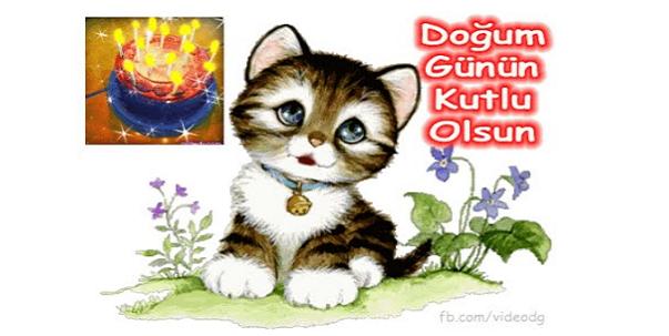 Doğum günün kutlu olsun. kedi resim doğum günü mesaj