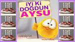 iyi ki doğdun AYSU !!!