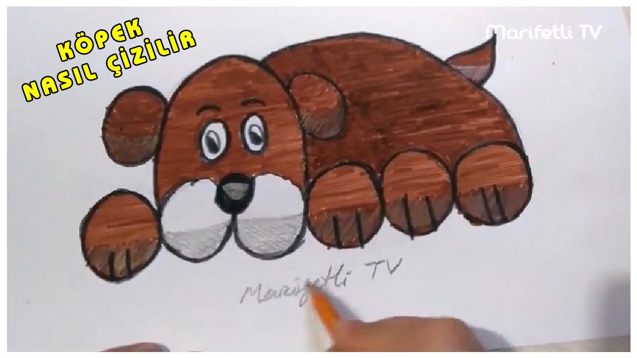 Köpek Nasıl çizilir Kolay Köpek çizimi Videodgnet