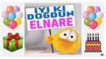 iyi ki doğdun ELNARE