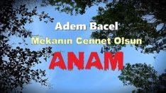 Adem Bacel – Vay Anam